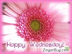 Click to get the codes for this image. Happy Wednesday Pink Flower, Happy Wednesday, Flowers Free Image, Glitter Graphic, Greeting or Meme for Facebook, Twitter or any forum or blog.