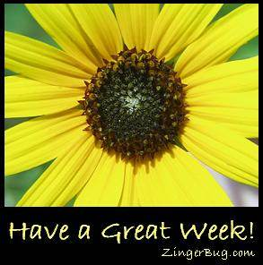 Click to get the codes for this image. Have A Great Week Sunflower, Have A Great Week, Flowers Free Image, Glitter Graphic, Greeting or Meme for Facebook, Twitter or any blog.
