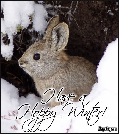 Click to get the codes for this image. Have A Hoppy Winter Snow Bunny Photo, Animals  Bunnies  Rabbits, Winter Free Image, Glitter Graphic, Greeting or Meme for Facebook, Twitter or any forum or blog.