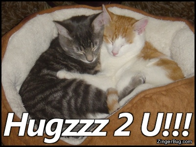 Click to get the codes for this image. Hugzzz 2 U Hugging Kittens, Animals  Cats, Hugs and Kisses Free Image, Glitter Graphic, Greeting or Meme for Facebook, Twitter or any forum or blog.