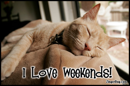 Click to get the codes for this image. I Love Weekends Sleeping Orange Cat Photo, Animals  Cats, Have a Great Weekend Free Image, Glitter Graphic, Greeting or Meme for Facebook, Twitter or any forum or blog.