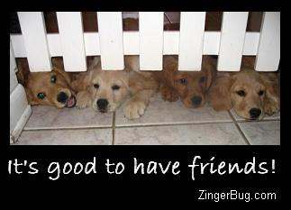 Click to get the codes for this image. Its Good To Have Friends Golden Retriever Puppies, Animals  Dogs, Friendship Free Image, Glitter Graphic, Greeting or Meme for Facebook, Twitter or any forum or blog.