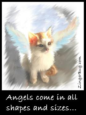 Click to get the codes for this image. This graphic shows a beautiful painting of a kitten with angel wings. The comment reads: Angels come in all shapes and sizes...
