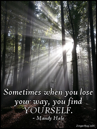 Click to get the codes for this image. This inspirational meme features a photograph of sunbeams shining through the trees of a forest creating a brilliant starburst. The quote is bye Mandy Hale and reads: Sometimes when you lose your way, you find YOURSELF.