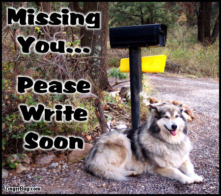 Click to get the codes for this image. Missing You Please Write Soon Dog By Mailbox Photo, Animals  Dogs, I Miss You Free Image, Glitter Graphic, Greeting or Meme for Facebook, Twitter or any forum or blog.