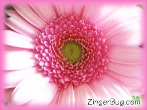 Click to get the codes for this image. Pink Flower Glitter Graphic, Flowers, Flowers Free Image, Glitter Graphic, Greeting or Meme for Facebook, Twitter or any blog.