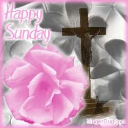Click to get the codes for this image. Pink Rose Cross Sunday, Religious  Christian, Happy Sunday, Flowers Free Image, Glitter Graphic, Greeting or Meme for Facebook, Twitter or any forum or blog.
