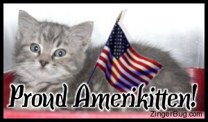 Click to get the codes for this image. Cute photo of a kitten with an American flag. Comment reads: Proud Amerikitten!