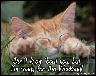 Click to get the codes for this image. this cute photo shows a sleeping kitten with its paws stretched out in front of it. The comment reads: Don't know 'bout you, but I'm ready for the Weekend!