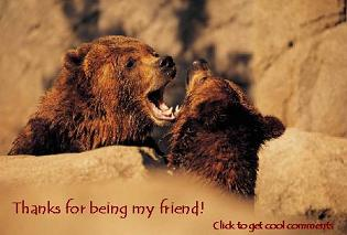 Click to get the codes for this image. Thanks For Being My Friend Bears Small, Thanks For The Add, Friendship, Animals  Bears Free Image, Glitter Graphic, Greeting or Meme for Facebook, Twitter or any forum or blog.