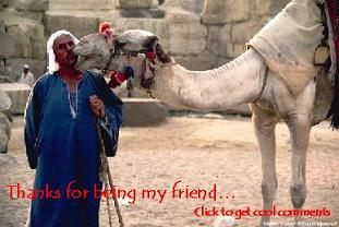 Click to get the codes for this image. Thanks For Being My Friend Camel Small, Thanks For The Add, Friendship, Animals  Horses  Hooved Creatures Free Image, Glitter Graphic, Greeting or Meme for Facebook, Twitter or any forum or blog.
