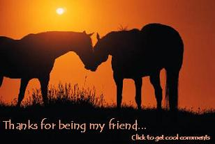 Click to get the codes for this image. Thanks For Being My Friend Horses Small, Thanks For The Add, Friendship, Animals  Horses  Hooved Creatures Free Image, Glitter Graphic, Greeting or Meme for Facebook, Twitter or any forum or blog.
