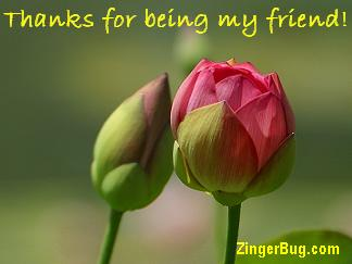 Image result for thanks for being my friend