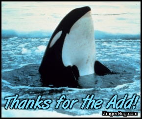 Click to get the codes for this image. Thanks For The Add Orka, Thanks For The Add, Animals  Fish Dolphins Whales Free Image, Glitter Graphic, Greeting or Meme for Facebook, Twitter or any forum or blog.