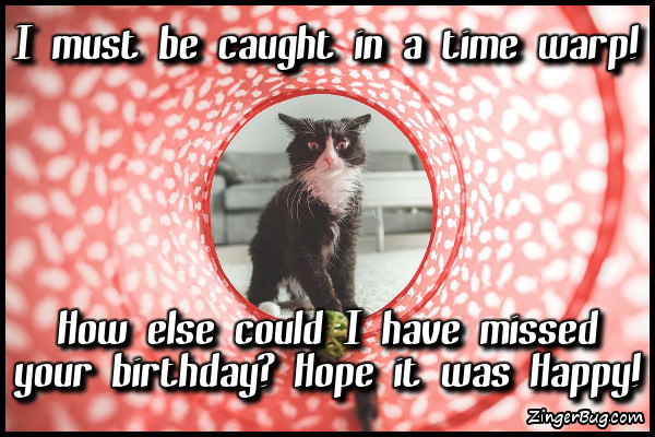 Click to get the codes for this image. Time Warp Kitty Missed Your Birthday, Happy Birthday, Happy Birthday, Belated Birthday Free Image, Glitter Graphic, Greeting or Meme for Facebook, Twitter or any forum or blog.