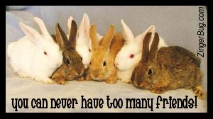 Click to get the codes for this image. Too Many Friends Bunnies, Animals  Bunnies  Rabbits, Friendship Free Image, Glitter Graphic, Greeting or Meme for Facebook, Twitter or any forum or blog.