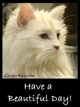 Click to get the codes for this image. This pretty graphic features a painting of a beautiful white kitten. The comment reads: Have a Beautiful Day!