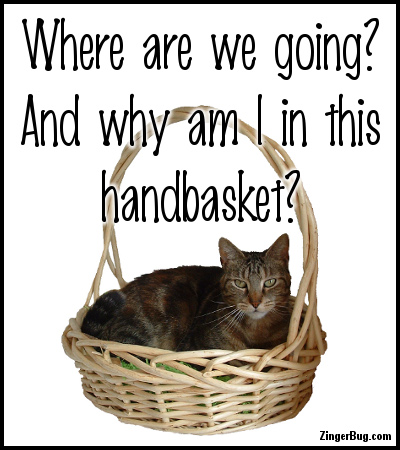 Click to get the codes for this image. Why Am I In This Handbasket Cat, Animals  Cats, Funny Stuff  Jokes, Quotes  Sayings Glitter Graphic, Comment, Meme, GIF or Greeting