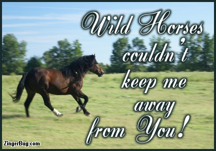 Click to get the codes for this image. Wild Horses Couldnt Keep Me Away From You Quote, Animals  Horses  Hooved Creatures, Love and Romance, Quotes  Sayings Glitter Graphic, Comment, Meme, GIF or Greeting