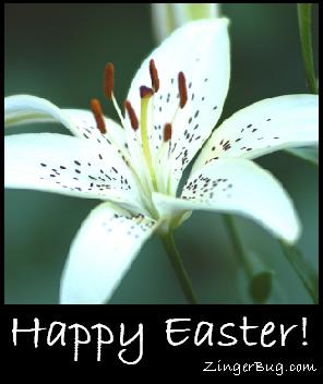 happy_easter_white_lily.JPG