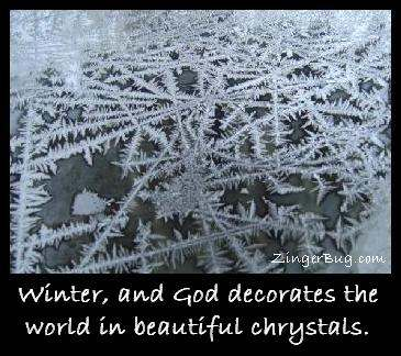 Click to get the codes for this image. This comment features a beautiful photograph of a close-up of ice chrystals on a pane of glass. The comment reads: Winter, and God decorates the world in beautiful chrystals.