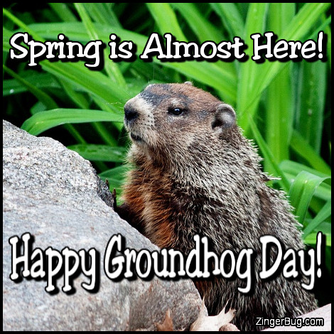 Click to get the codes for this image. Almost Spring Happy Groundhog Day, Groundhog Day Glitter Graphic, Comment, Meme, GIF or Greeting