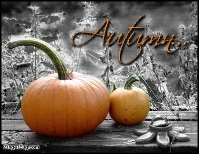 Click to get the codes for this image. Autumn Pumpkins, Autumn  Fall Free Image, Glitter Graphic, Greeting or Meme for Facebook, Twitter or any forum or blog.