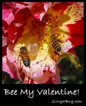 Click to get the codes for this image. Close-up photograph of 2 bees on a red and yellow flower. The comment reads: Bee My Valentine!