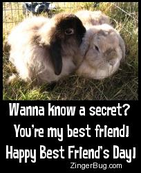 Click to get the codes for this image. Cute photo of a bunny that appears to be whispering into the ear of another bunny. The comment reads: Wanna know a secret? You're my best friend! Happy best Friend's Day!