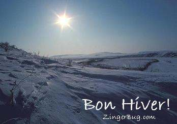 Click to get the codes for this image. Photograph of the winter sun over a field of snow with the comment: Bon Hiver! (which means Happy Winter in French)