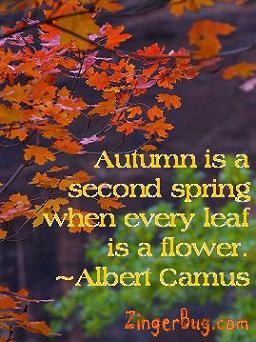 Click to get the codes for this image. This graphic features a photograph of autumn leaves with a quote by Albert Camus: Autumn is a second spring when every leaf is a flower.