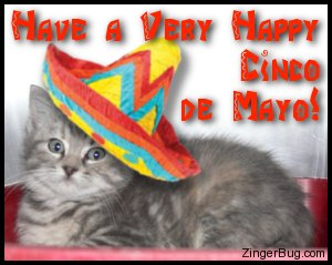Click to get the codes for this image. Cute photo of a kitten wearing a sombrero. The comment reads: Have a Very Happy Cinco de Mayo!