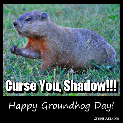 Click to get the codes for this image. Curse You Shadow Funny Groundhog Day Meme, Groundhog Day Glitter Graphic, Comment, Meme, GIF or Greeting