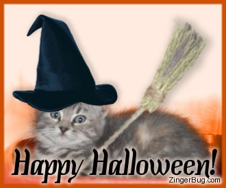 Click to get the codes for this image. Cute photo of a kitten wearing a witch hat and holding a broom. The comment reads: Happy Halloween!