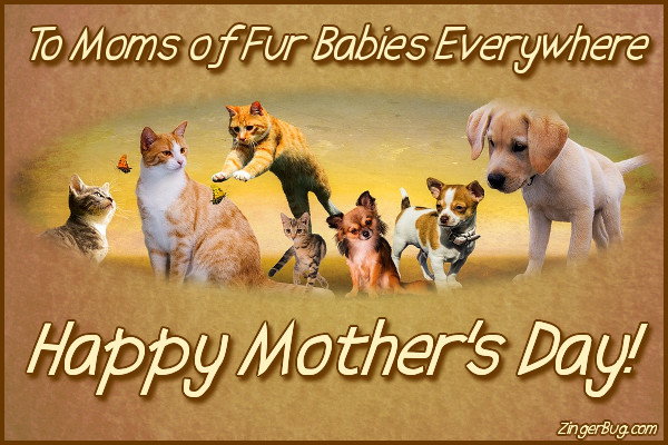 Click to get the codes for this image. Happy Mothers Day To Moms Of Fur Babies, Mothers Day Free Image, Glitter Graphic, Greeting or Meme for Facebook, Twitter or any forum or blog.
