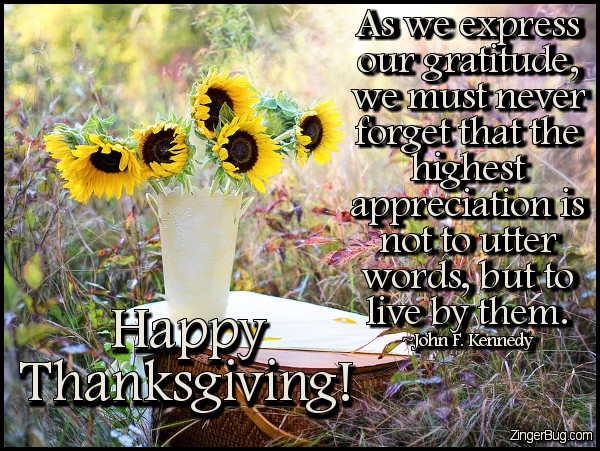 Click to get the codes for this image. Happy Thanksgiving Jfk Quote, Thanksgiving Glitter Graphic, Comment, Meme, GIF or Greeting