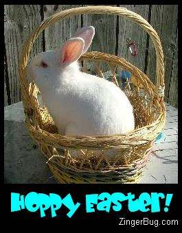 Click to get the codes for this image. Hoppy Easter Bunny In Basket, Easter Free Image, Glitter Graphic, Greeting or Meme for Facebook, Twitter or any forum or blog.