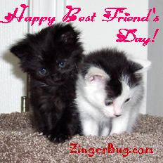 Click to get the codes for this image. Happy Best Friend's Day Kittens, Best Friends Day Free Image, Glitter Graphic, Greeting or Meme for Facebook, Twitter or any forum or blog.