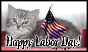 Click to get the codes for this image. Cute photo of a kitten with an American Flag. Comment reads: Happy Labor Day!
