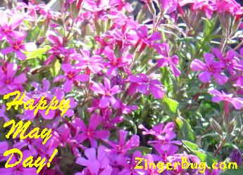 Click to get the codes for this image. May Day Purple Flowers, May Day  Beltane Free Image, Glitter Graphic, Greeting or Meme for Facebook, Twitter or any forum or blog.