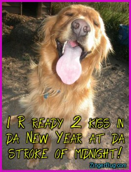 Click to get the codes for this image. Funny photo of a dog with its eyes closed, mouth open and tongue out. The comment reads: I R ready 2 kiss in da New Year at da stroke of Midnight!