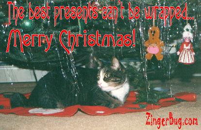 Click to get the codes for this image. This cute photo shows a cat sitting under a Christmas tree. The comment reads: The best presents can't be wropped... Merry Christmas!