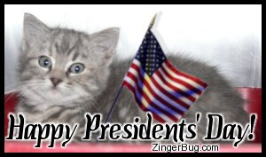 Click to get the codes for this image. Presidents' Day Kitten With Flag, Presidents Day Free Image, Glitter Graphic, Greeting or Meme for Facebook, Twitter or any forum or blog.