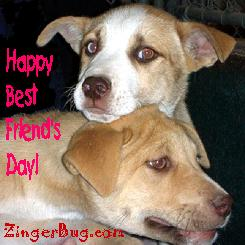 Click to get the codes for this image. Happy Best Friends Day puppies, Best Friends Day Free Image, Glitter Graphic, Greeting or Meme for Facebook, Twitter or any forum or blog.