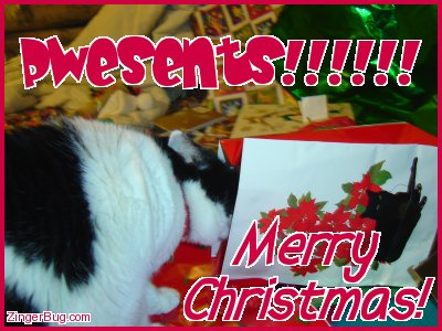 Click to get the codes for this image. This funny photo shows a cat sticking it's head into a Christmas Gift bag. The comment reads: Pwesents!!!!! Merry Christmas!