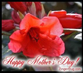 Click to get the codes for this image. Red Flower Happy Mother's Day, Mothers Day Free Image, Glitter Graphic, Greeting or Meme for Facebook, Twitter or any forum or blog.
