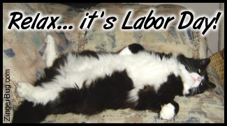 Click to get the codes for this image. This funny photo shows a black and white cat asleep on it's back with a big white furry belly. The comment reads: Relax... It's Labor Day!
