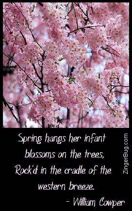 Click to get the codes for this image. This comment features a photograph of pink cherry blossoms with a quote by William Cowper reading: Spring hangs her infant blossoms on the trees, Rock'd in the cradle of the western breeze.
