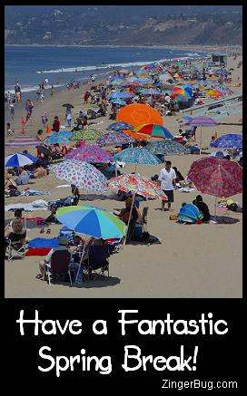Click to get the codes for this image. Photo of a crowded beach scene with colorful beach umbrellas. The comment reads: Have a Fantastic Spring Break!