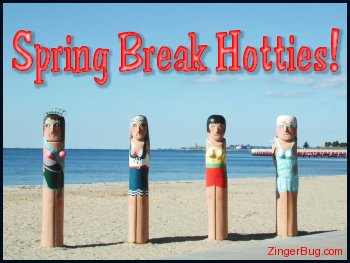 Click to get the codes for this image. Funny photo of 2 wooden poles on a beach. The poles are carved and painted to look like women in bathing suits. The comment reads: Spring Break Hotties!